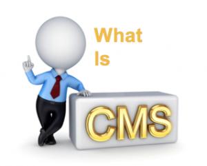سیستم مدیریت محتوا و وردپرس چیست؟